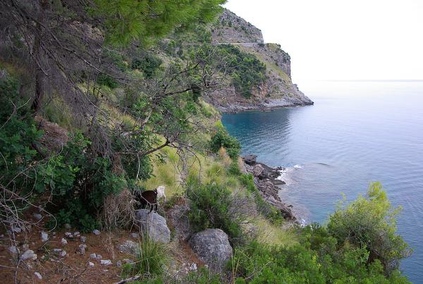 Urlaub 2008 - die Küste