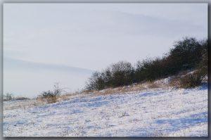 Winterlandschaft bei Jena